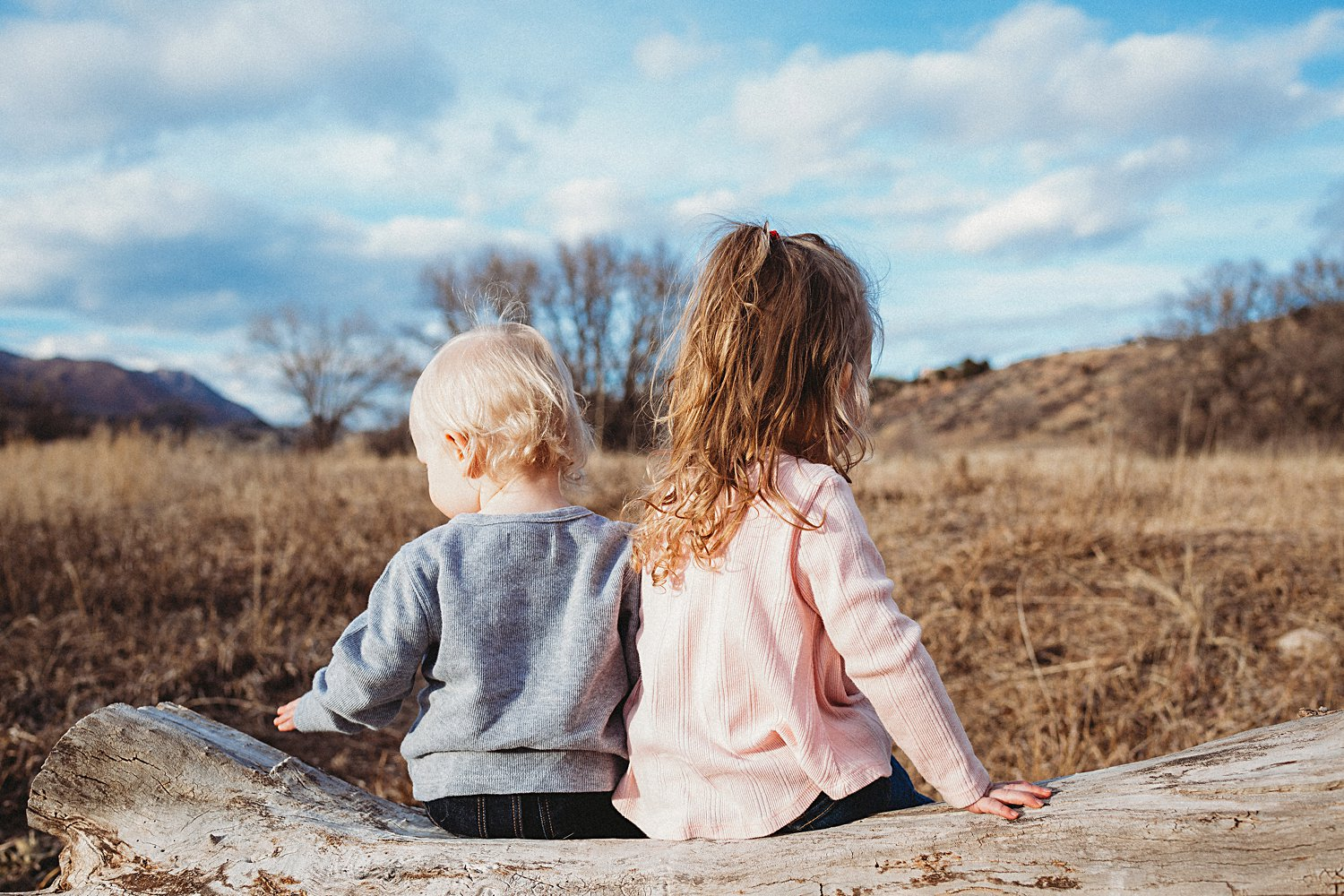 Toddler children sitting on log with their backs to the camera