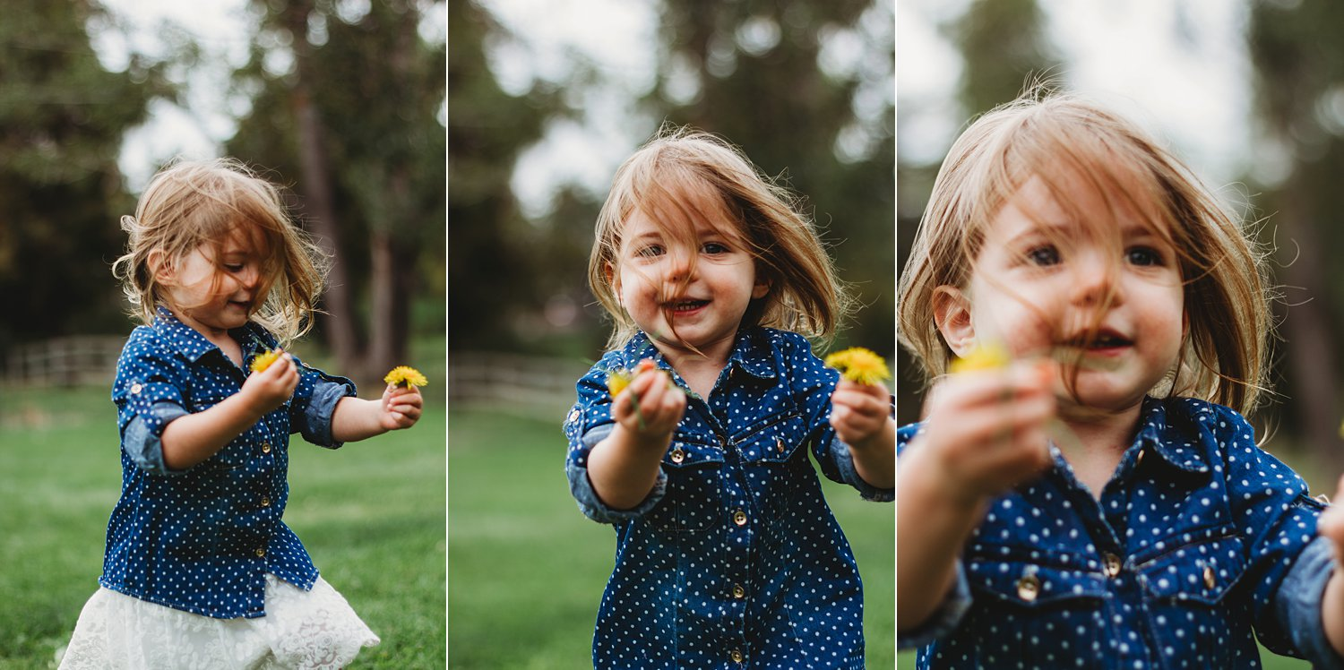 Portraits of young girl running excitedly through grass with dandelions