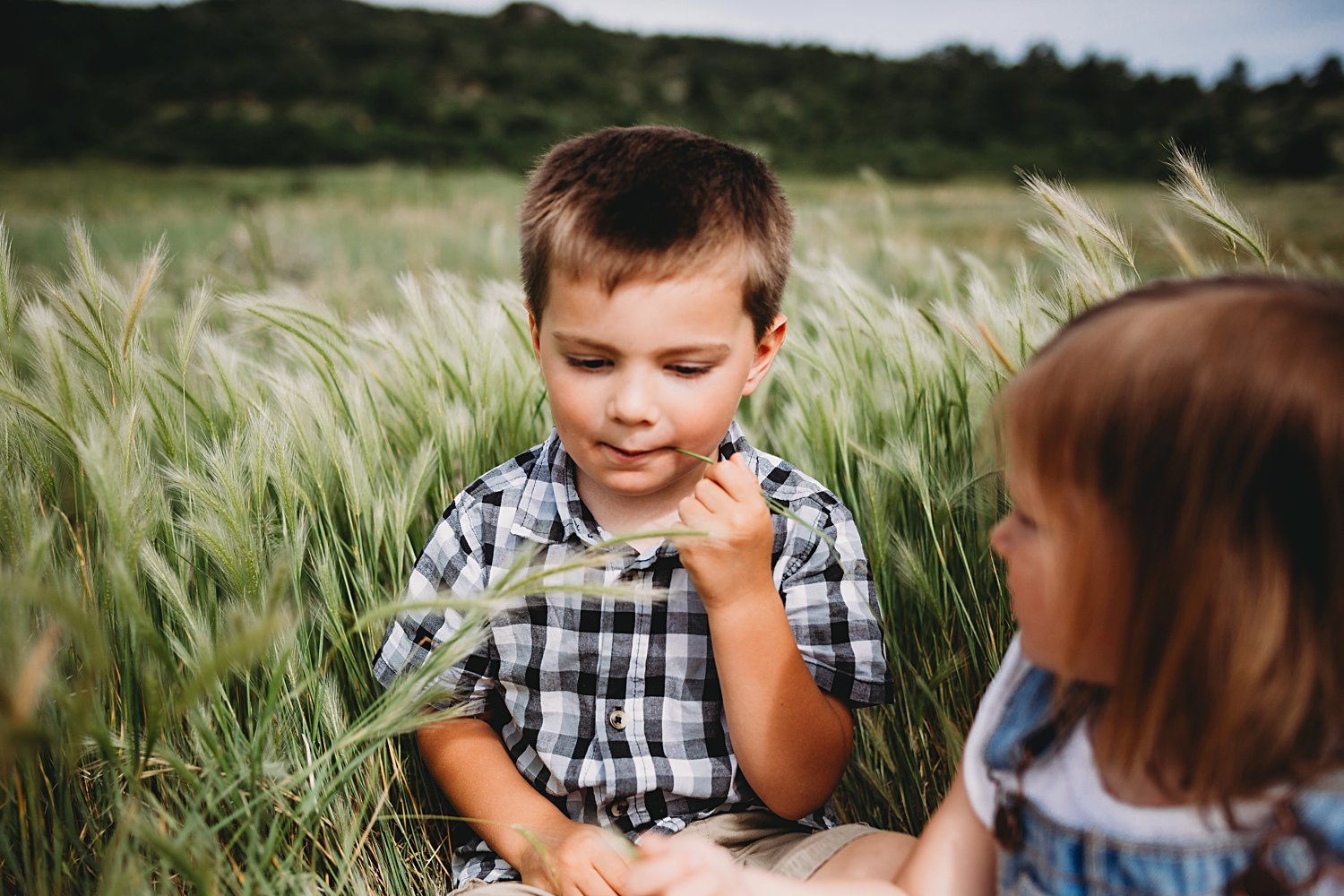 Two young children sitting in a field of tall grass